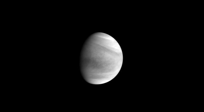 Akatsuki's Venus Flyby