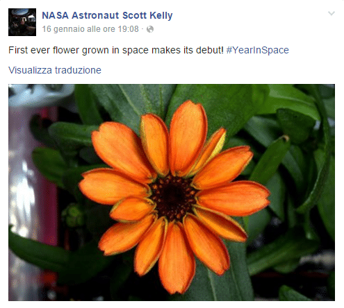 Scott Kelly post