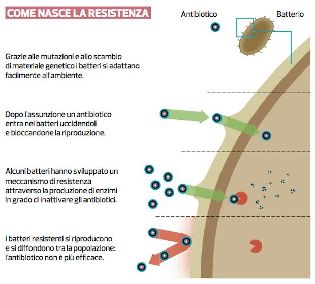 Come nasce la resistenza agli antibiotici