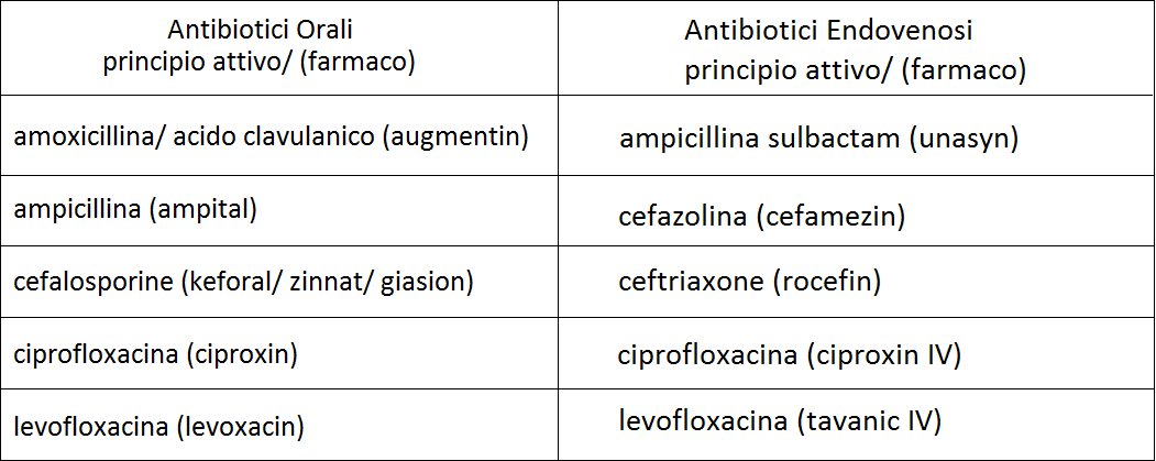 Antibiotici per l'Escherichia Coli