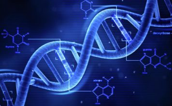 DNA, Close-up Engineering, Credits: mashable.com