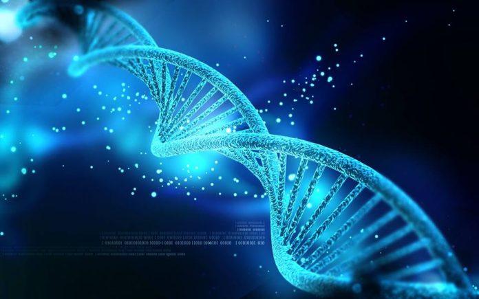 DNA, modificarlo sì o no?